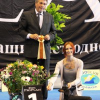 "Russia. Samara. International dogs show ""VOLGA - 2012"""