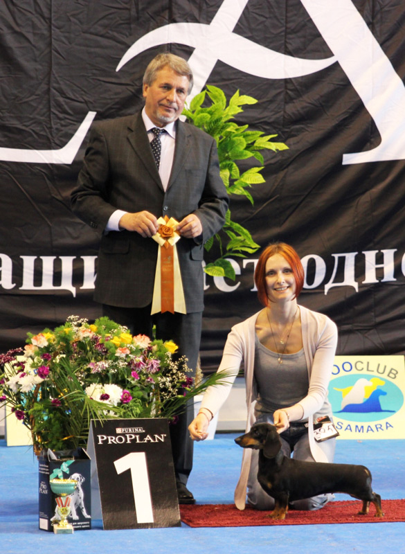 "Russia. Samara. International dogs show ""VOLGA - 2012"""