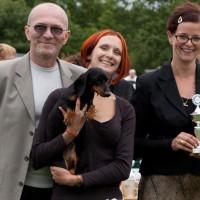 MOKKO MAKSIMUM REVOLUTSIA WELT UNION TECKEL WINNER 2010 Danish Beauty Champion, BEST OF BREED, BIS-4