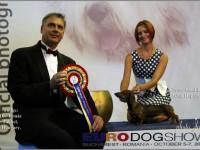 Formula Uspeha Colibri - Junior Euro Winner, 1-Best in Show Junior (2012)