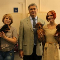 26-27.10.13. Poznan. International Dog Show.
