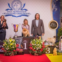Formula Uspeha Colibri - Top-Dog in Russia -2nd place!(1025 points)