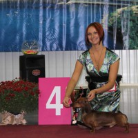 Formula Uspeha Big Bang - CAC, CACIB, BOB, 1-Best in Group, 4-Best in Show