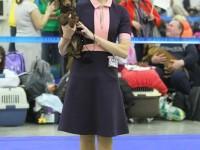 Formula Uspeha Chanel (KS) – J.CAC, Best Junior (10 Best Dog in BISJ)