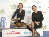 Formula Uspeha Big Bang - CACIB, BOB,Helsinki Winner, 1 - Best in Group