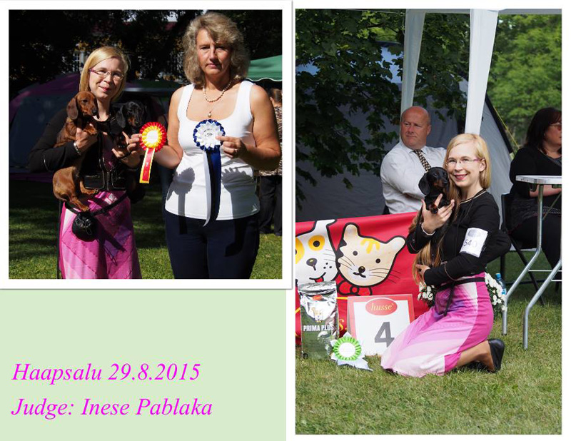 Formula Uspeha Teodora - CAC, BOB, 4-Best in Group, NEW CH EST!!!
