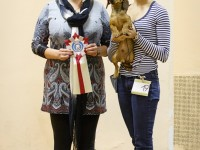 Formula Uspeha Top Gear (MS) – Best Puppy, 1-Best in Show Puppy