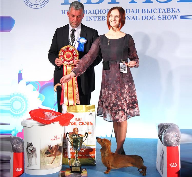 Formula Uspeha Orlandina – CAC, CACIB, CH RKF, CH Eurasia, BOB, Res.Best in Group