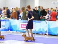 Formula Uspeha Top Gear & Formula Uspeha Orlandina – Best Couple in breed