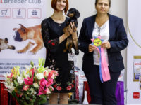 Formula Uspeha Jumzhujina (KS) - J.CAC, Best Junior, BOB, 5-Best in Show Junior, 1-Best in Group!!!