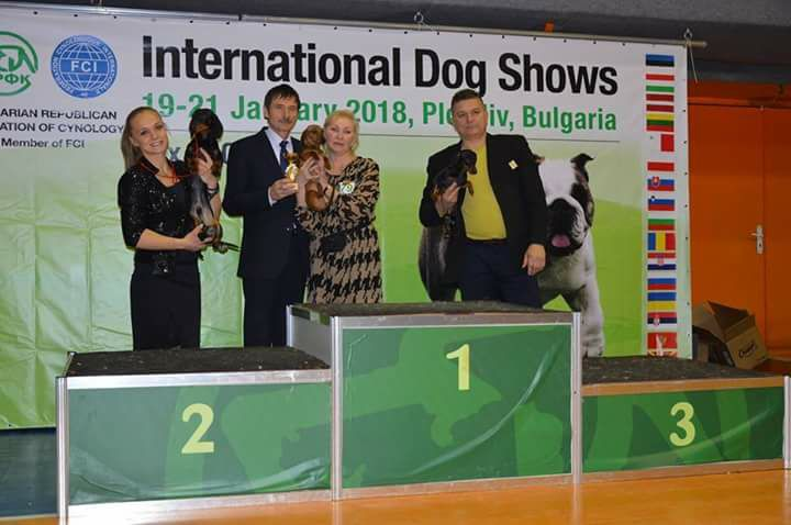 Formula Uspeha Solera Reserva -JCAC, JBOB, BOB, 1-Best in Group, 1-Best in Show Junior!