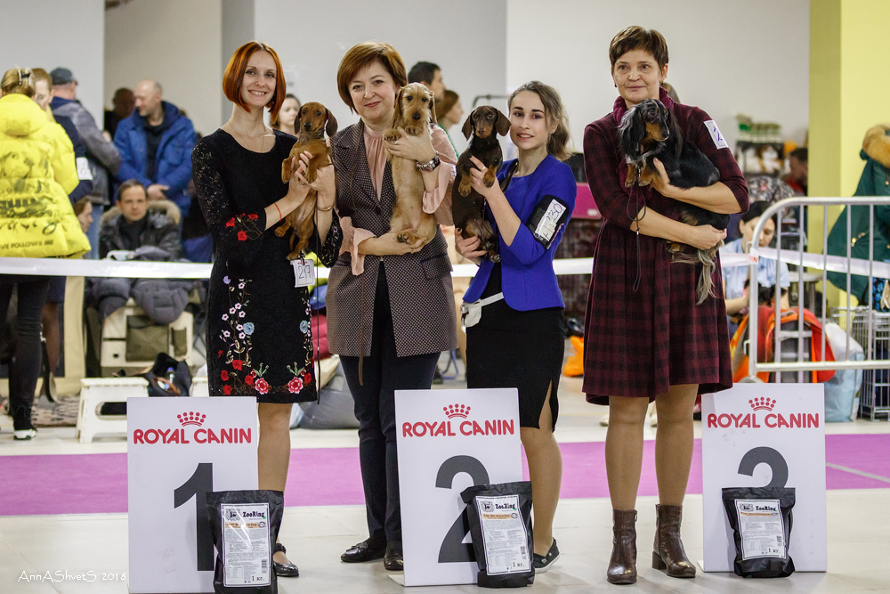 Formula Uspeha Raketa (KS) - CAC, BOB, 1-Best in Group! & Formula Uspeha Well Done (MS) - CAC, BOB, 3-Best in Group!