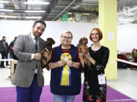 Moscow. Russia. Special dachshund show