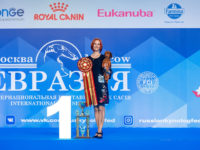 Formula Uspeha Top Gear (MS) - CAC, CACIB, CH RKF, CH Eurasia, BOB, 1-Best in Group, New Interchampion!!!
