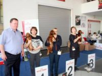 Formula Uspeha Vegas – JCAC, Best Junior, BOB, 1-Best in Group, 3-Best in Show!