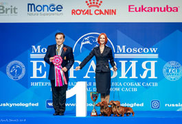 Russia. Moscow. International dog show «Eurasia-2»
