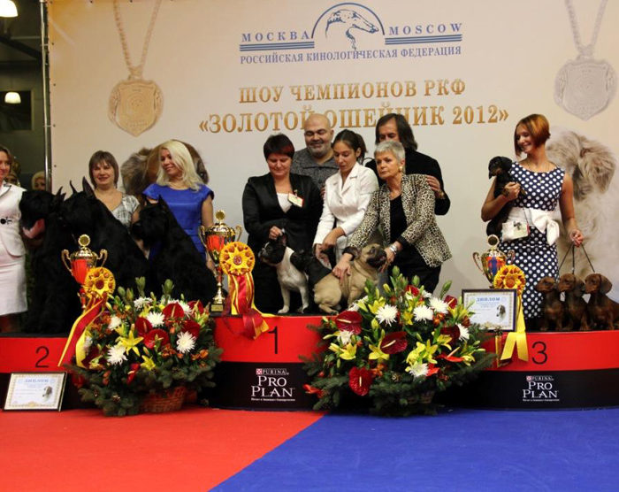 Formula Uspeha kennel become 3rd in Top Kennel Russia - 2012