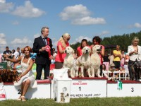 Formula Uspeha - 2nd place Best Kennel