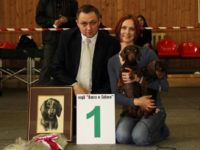 21.04.12. Moscow. Special Dachshund Show.