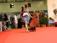 """Formula Uspeha"" kennel become 3rd in ""Top Kennel Russia - 2012"""