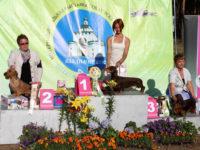Russia. Vladimir. International Dog Show - 2012