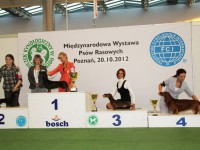 Formula Uspeha Whirlpool - CAC, CACIB, BOB, 3-Best in Group