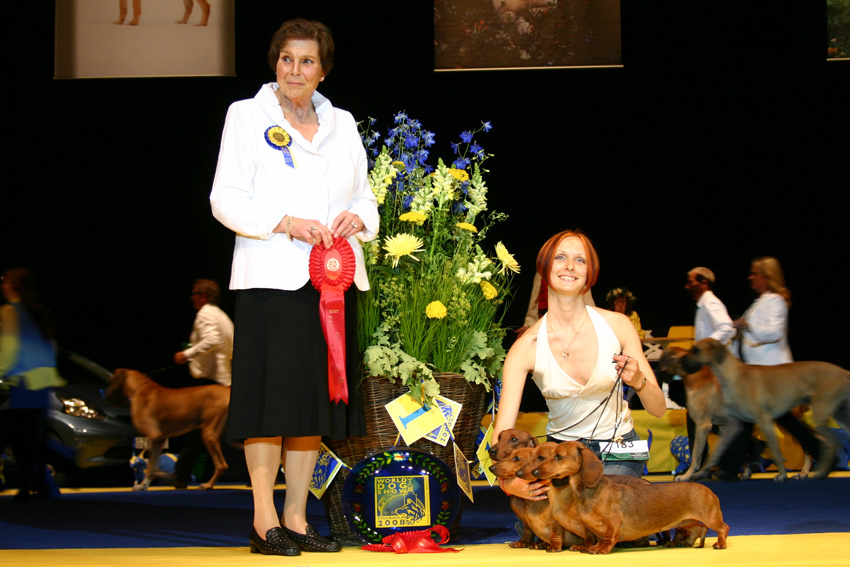 FORMULA USPEHA WORLD'S BEST KENNEL-2008