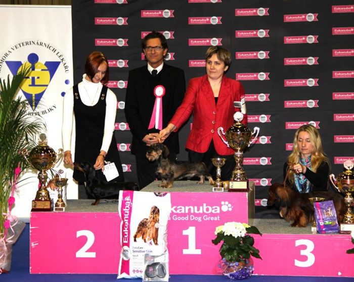 Formula Uspeha Vivat Victoria - CAC, CACIB, BOB, Res.Best in Group