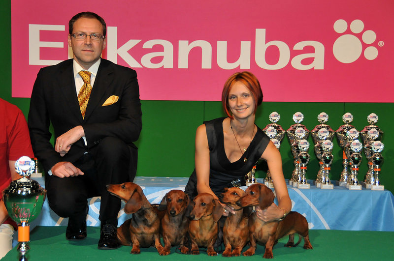 FORMULA USPEHA – 1 BEST KENNEL !!!