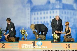 FORMULA USPEHA GREATEST HIT 2 x WORLD WINNER 3 place in BEST IN GROUP