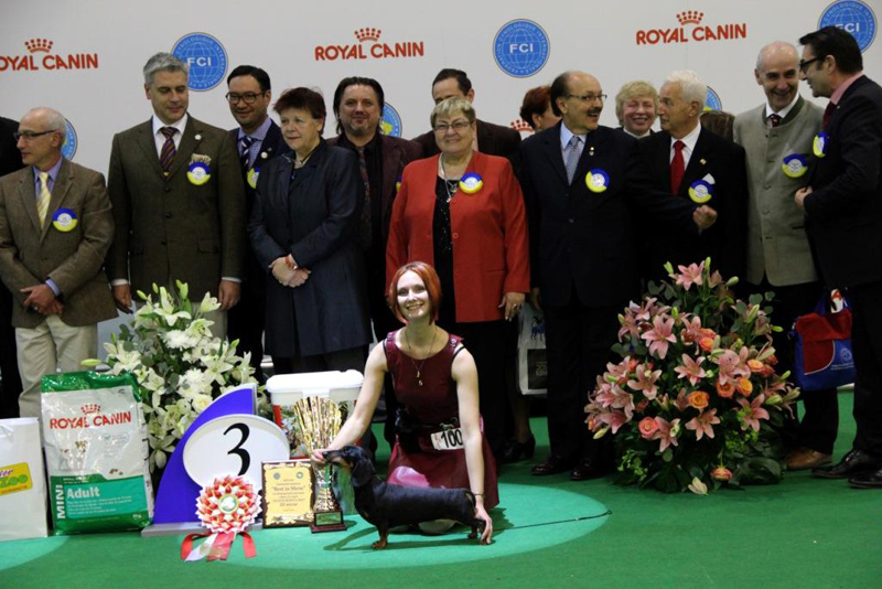 Mokko Maksimum Revolutsia - Best Veteran, BOB, 1-Best in Group, 3-Best in Show!!!!