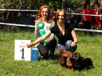 Formula Uapeha - 1-Best Kennel