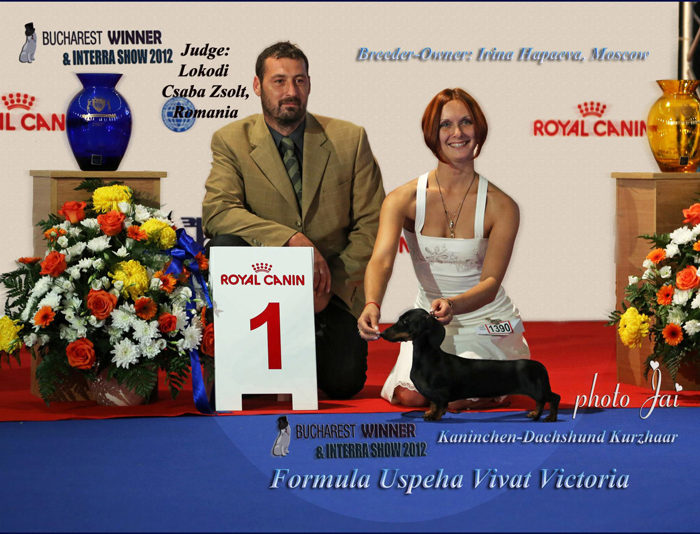 Formula Uspeha Vivat Victoria - Euro Winner-2012