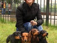 Formula Uspeha Dogs