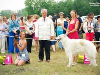 Formula Uspeha Colibri - CAC, CACIB, CH RKF, BOB,1- Best hunting dog in Show