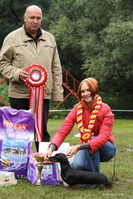 Formula Uspeha Verona - CAC, BOB, 1-Best in Group, 1-Best in Show!!!!!