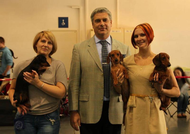 26-27.10.13. Poznan. International Dog Show.