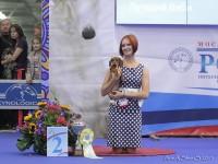 Formula Uspeha Dexter - Best Baby, Res.Best in Show Baby