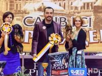 Formula Uspeha Colibri - CAC, CACIB, CH RKF, BOB, 1-Best in Group