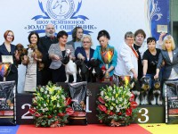 Formula Uspeha - Top-Kennel in Russia -2nd place! (3235 points)