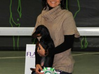 Formula Uspeha Cleopatra - CAC, CH RKF, BOB, 3-Best in Group