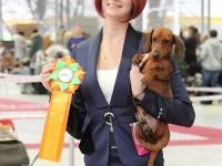 Formula Uspeha Dexter – Best Puppy, 3-Best in Show Puppy