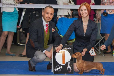 Formula Uspeha Orlandina - Club Winner, BOB, 1-Best in Show!
