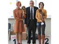 Formula Uspeha Big Bang – Club Winner, BOB, 3-Best in show & Formula Uspeha Orlandina - Club Winner, BOS