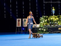 Formula Uspeha - 1-Best Kennel in breed, 4-Best Kennel BIS