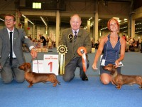 Formula Uspeha Big Bang - R.CACIB, Vice.World Winner