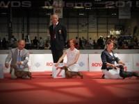 Formula Uspeha Big Bang - CAC, R.CACIB, Vice World Winner, CH Italy