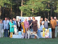Formula Uspeha Colibri (KS) – CAC, CACIB,CH RKF, BOB, 1-Best in Group, RES.BEST IN SHOW!!!!