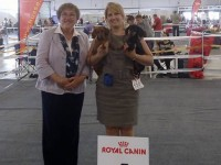 Russia. Kazan. International Dog Show.
