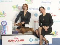 Formula Uspeha Big Bang - CACIB, BOB,Helsinki Winner, 1 - Best in Group
